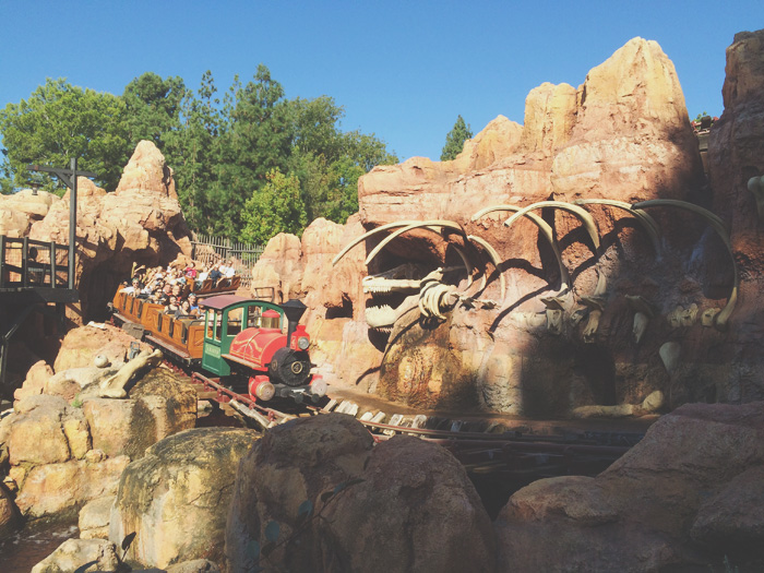 Disneyland-13psd