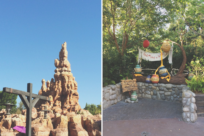 Disneyland-14
